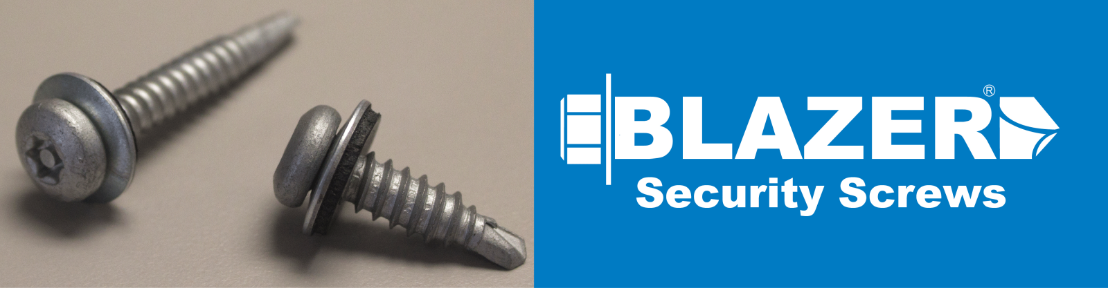Blazer-Security-Screws-website-header2018.png